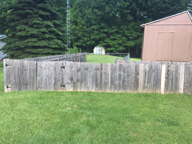 wood fence before tree frog softwash fence cleaning job