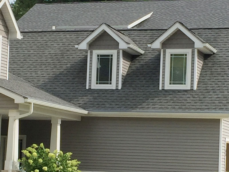 tree frog softwash roof cleaning job using soft wash method to remove black streaks from roof in indiana